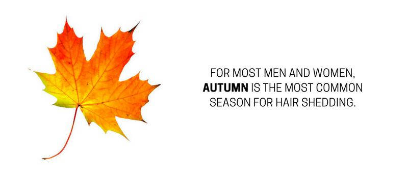 Seasonal hair loss when and why